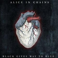 aic-black-gives-way-main