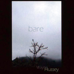 Wayne-Hussey-Bare